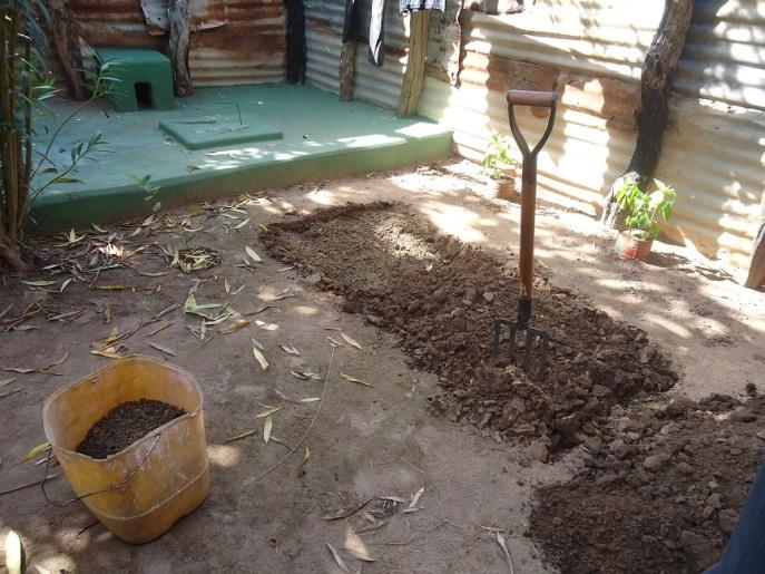 pic - garden